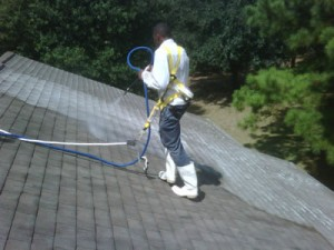 roof cleaning in Delaware & Philadelphia